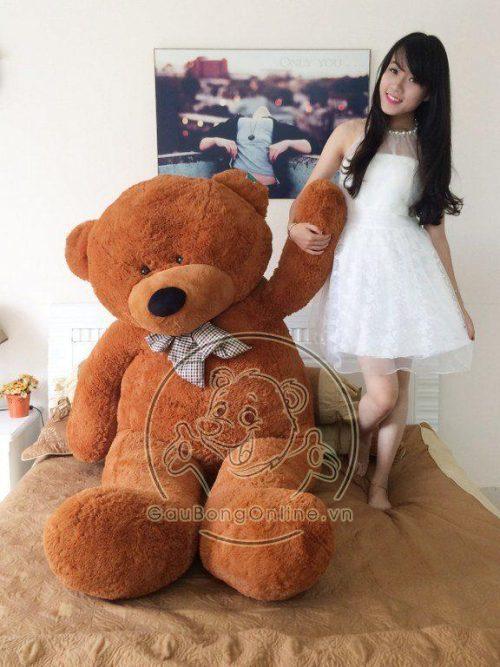 Mua Gấu Teddy giá rẻ ở Hà Nội