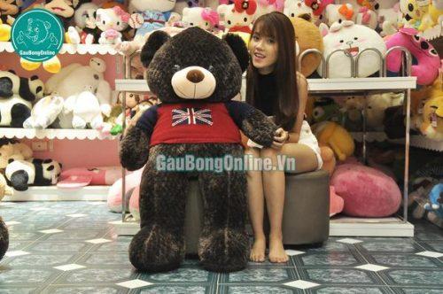 Gấu bông teddy giá rẻ