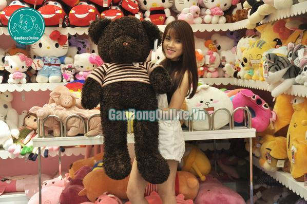 Gấu teddy 1m2 lông xù