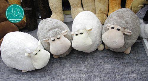 Cừu tròn
