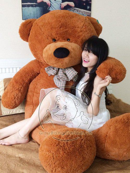 gau bong teddy 2m 1