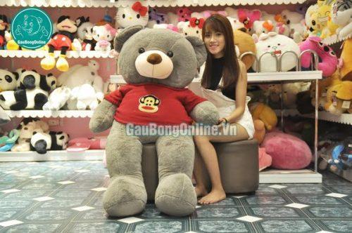 Gấu Teddy áo len Khỉ