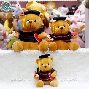 Gấu Cử Nhân