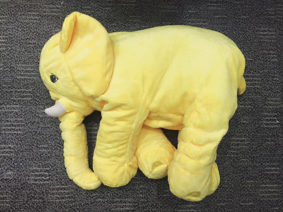voi bông vàng chanh