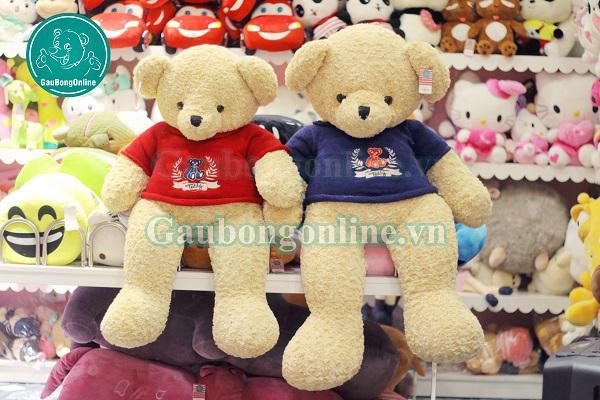 Gấu Bông Teddy 1m2