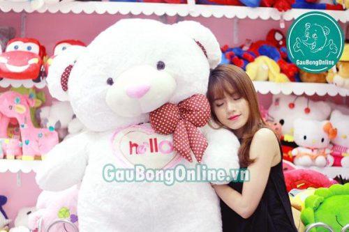 gấu teddy 1m6