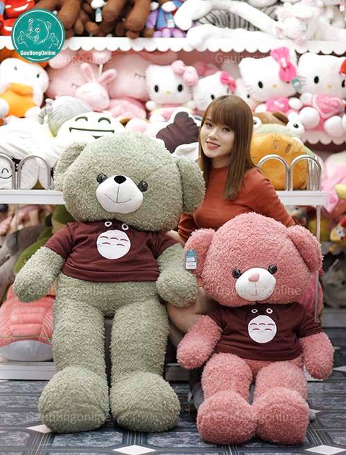 Teddy Áo Len Totoro