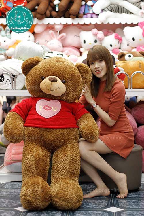 Teddy Áo Love 1m4