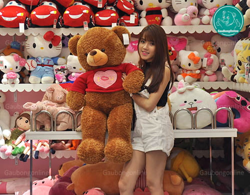 Teddy Áo Love 1m1