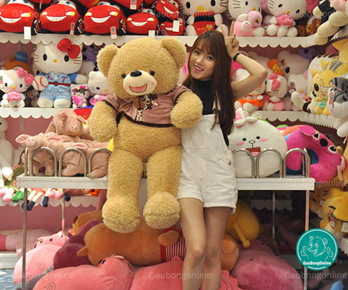 Teddy Áo Nỉ Thú 1m1