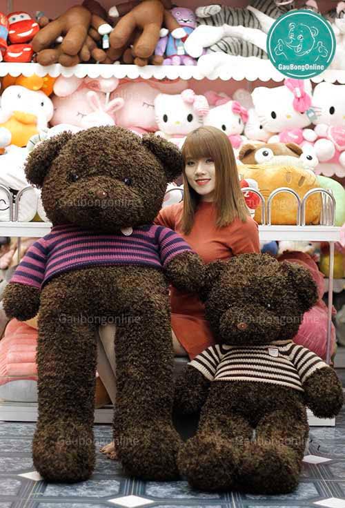 Gấu Teddy Đen Xù
