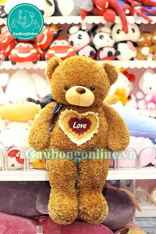 Giá gấu bông teddy