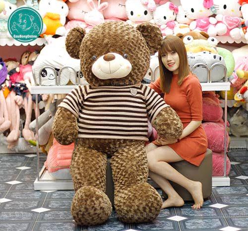Teddy Socola 1m7