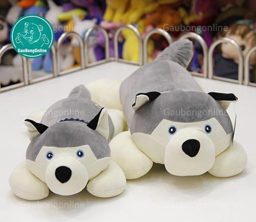 Chó Husky Khăn