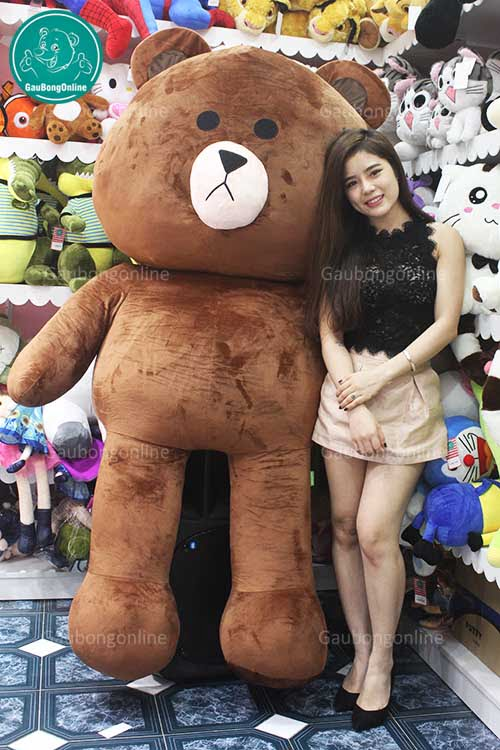 Gấu Brown 2m