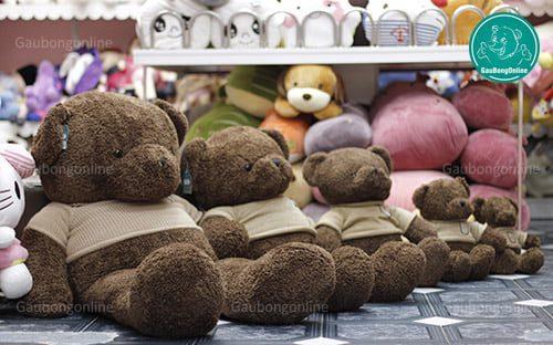 Teddy Head Tales