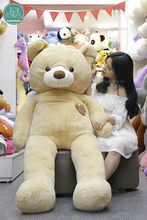 Teddy Nâu Love