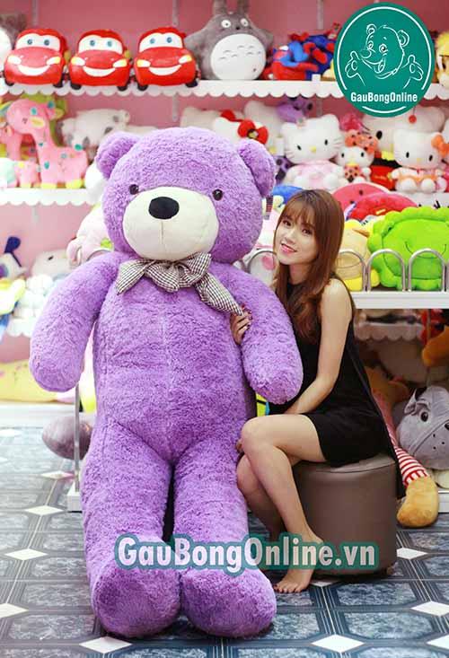 Teddy Tím