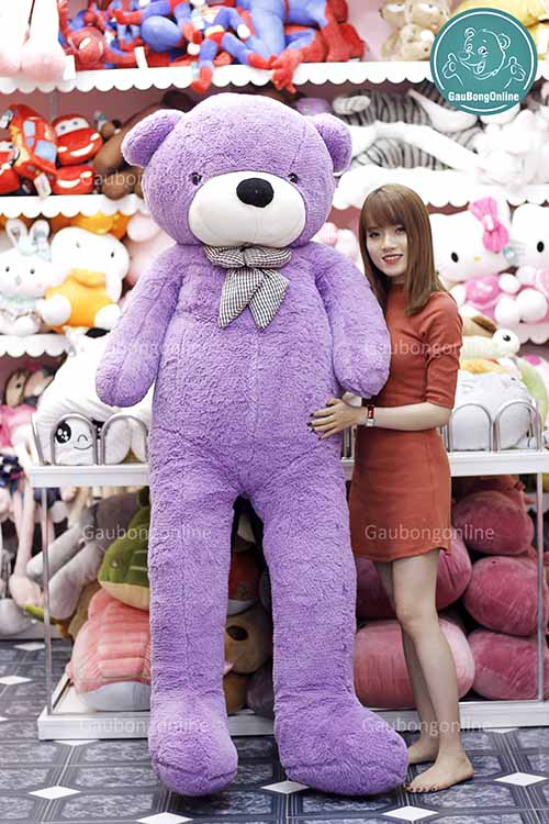 Teddy Tím 2m