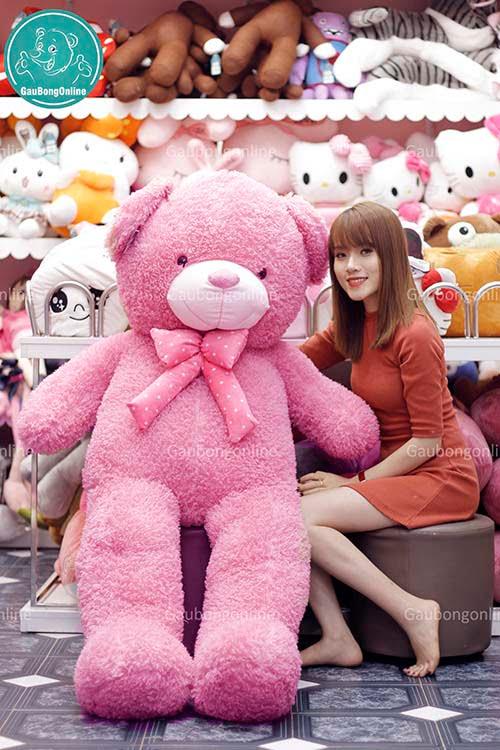 Teddy Xù 1m6