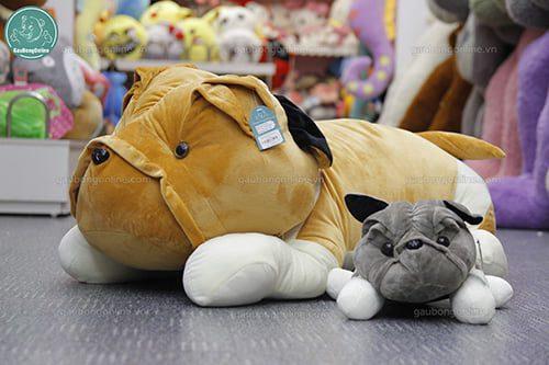 Chó Ngao Đại