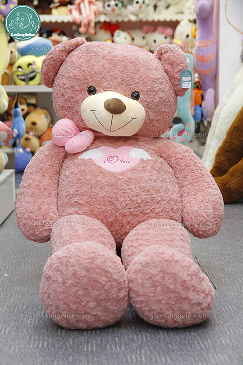 Teddy Angel Hồng 1m6