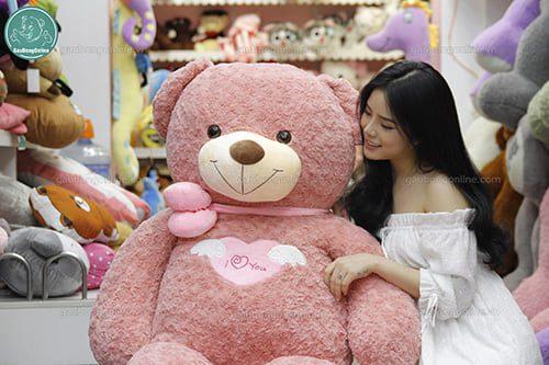 Bán gấu bông Teddy Angel Hồng