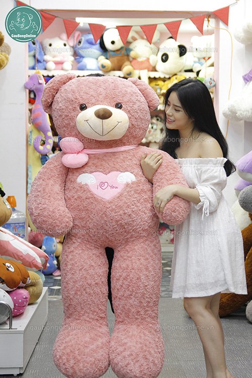 Teddy Angel Hồng 1m3