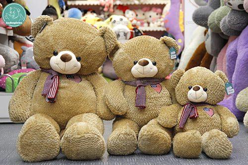 Teddy Khăn Cổ Mỹ