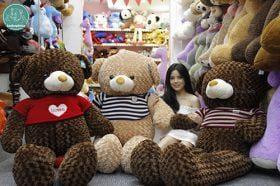 Teddy X