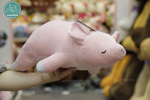 Lợn bông nằm