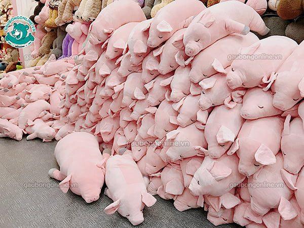 Lợn Mềm Bông