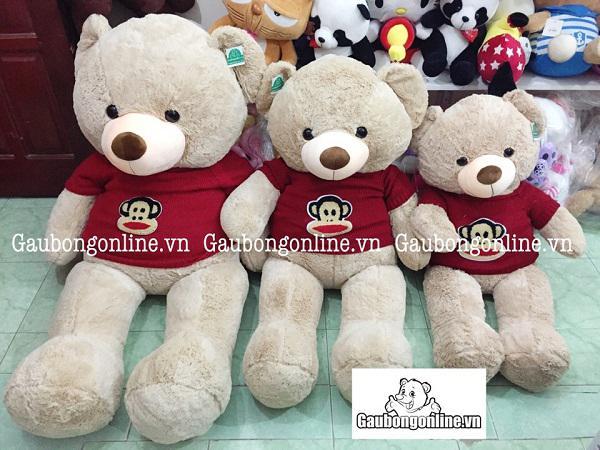 Gấu teddy ao len khỉ