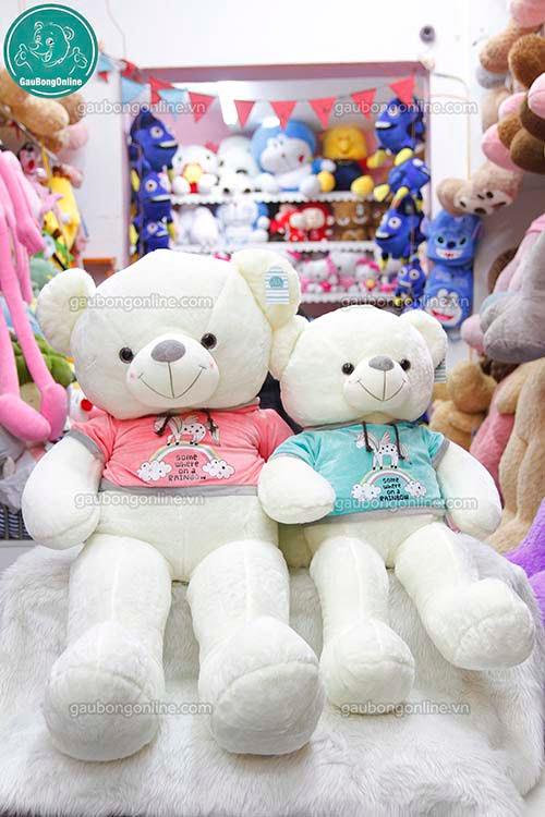 Gấu Bông Teddy Áo Nỉ Thú