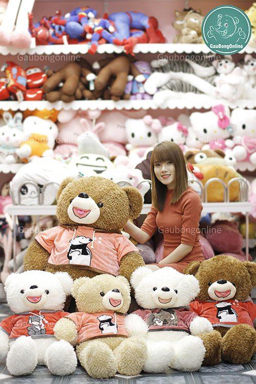 Gấu teddy áo nỉ thú
