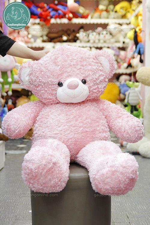 Teddy Hồng Baby