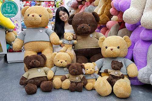 Teddy Head Tales Đại