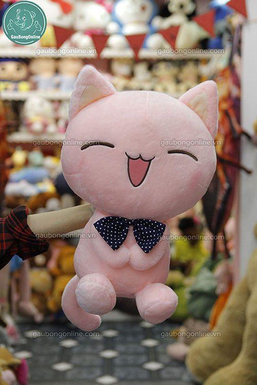 Mèo Híp Hồng