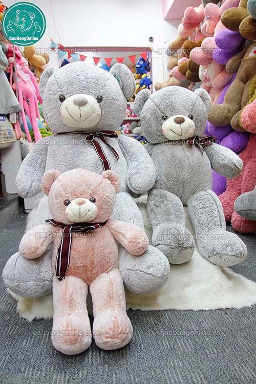 Gấu Bông  Teddy Nhung