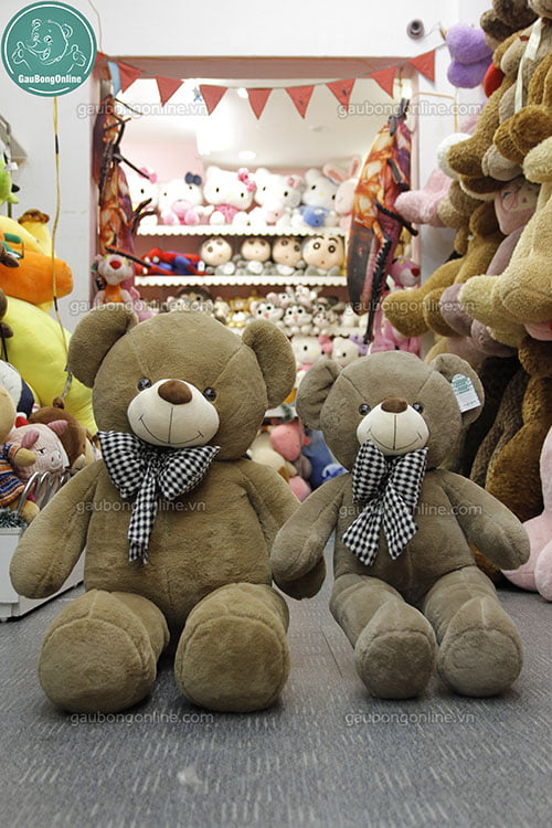 Teddy nơ caro