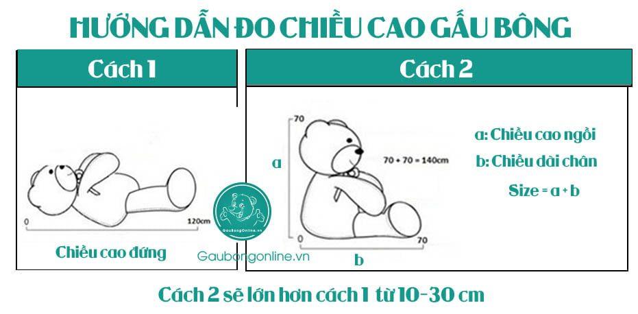 cach-do-gau-bong-chuan-gaubongonline (1)