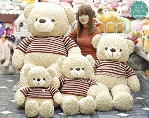 Gấu bông teddy áo len logo baby