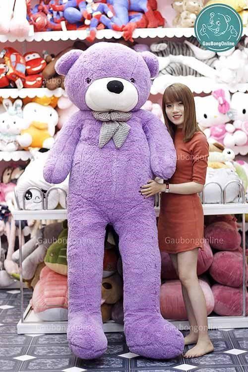 Gấu teddy tím chung thuỷ lắm đó nha