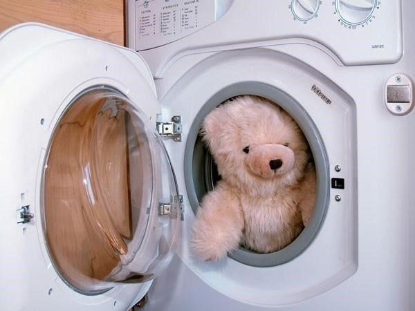 Kết quả hình ảnh cho vệ sinh gấu bông