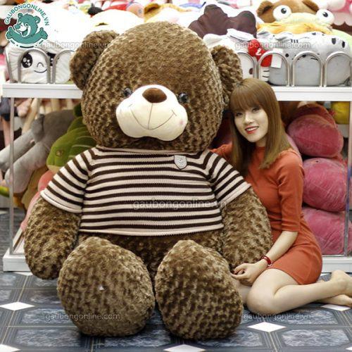 Gấu Bông Teddy Socola 1m7 & 2m