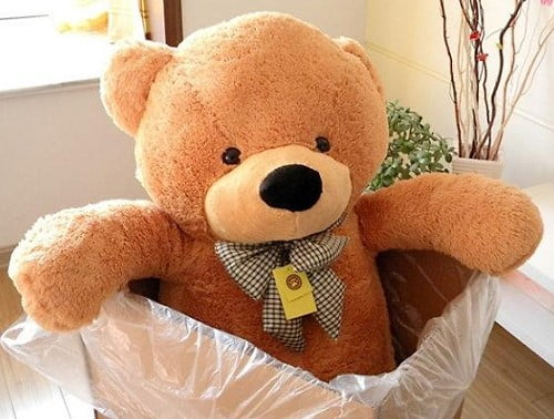 Ý nghĩa của việc tặng gấu bông