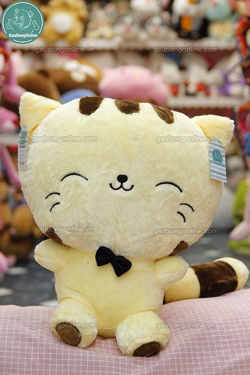 Mèo Vàng Mặt Lớn