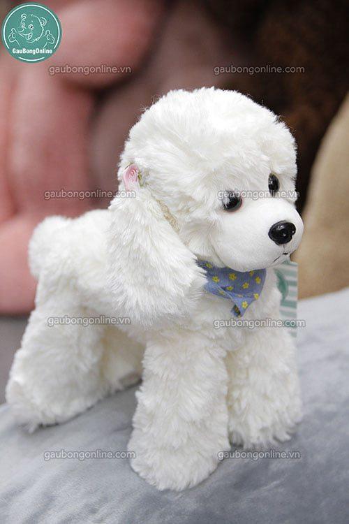Chó Cừu