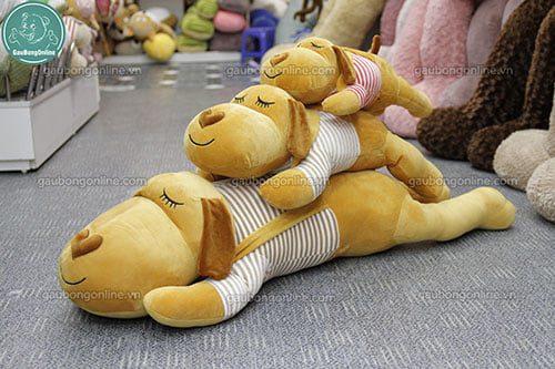 Chó Mũi Tim Áo Kẻ
