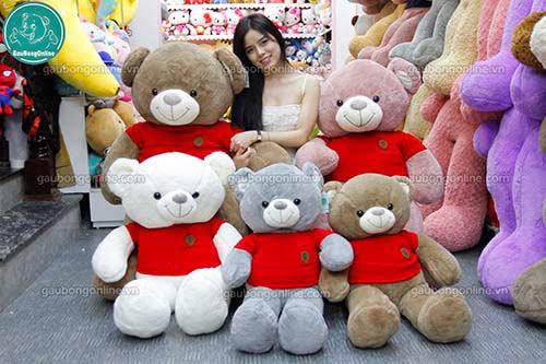 Teddy Nhung Áo Len